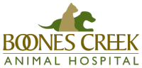 Boones Creek Animal Hospital